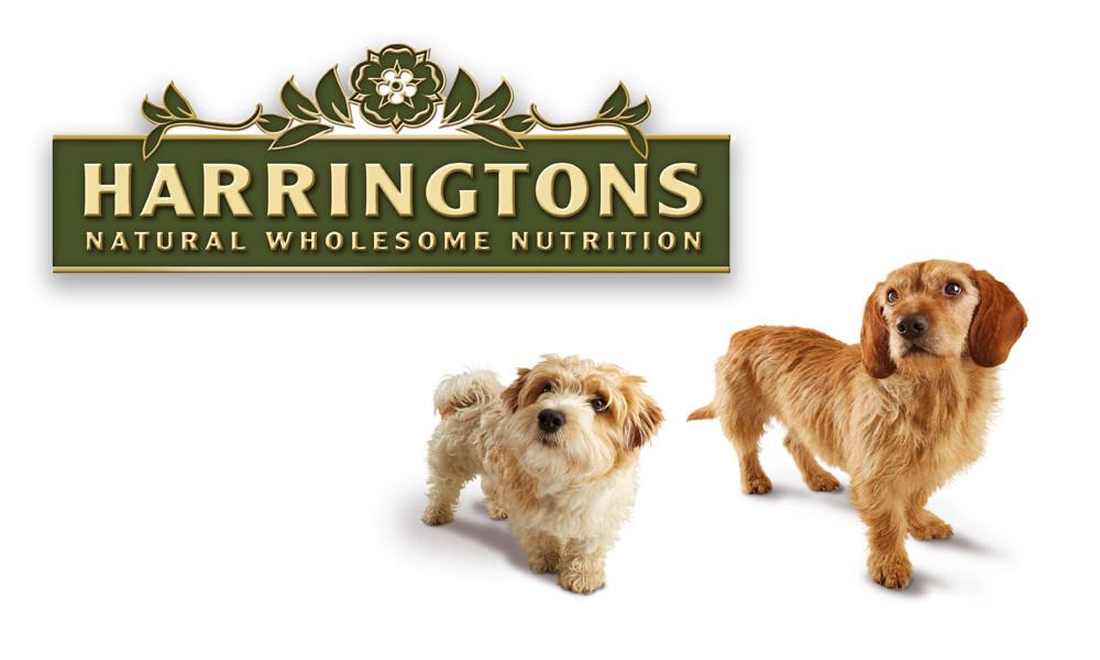 Harringtons Dog Parties