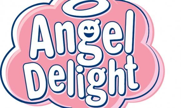 Angel Delight ' Win Your Weekly Shopping' T&Cs