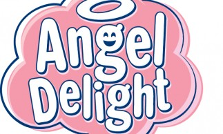 Angel Delight  Win Your Weekly Shopping T&Cs